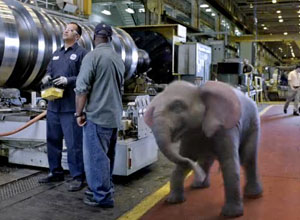 Not every GE site can boast of being visited by a dancing elephant. But the Schenectady campus is now on that short list.
